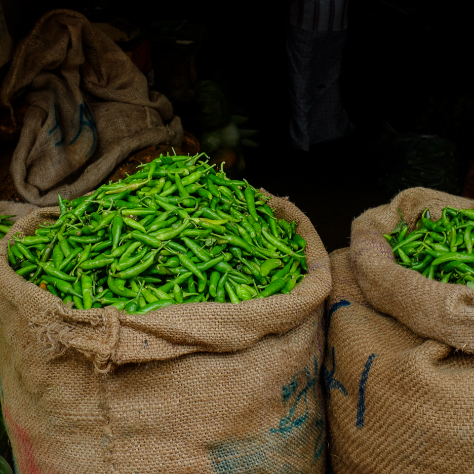 green chilies in India